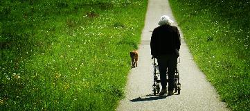 Elderly woman on walking on path with walker