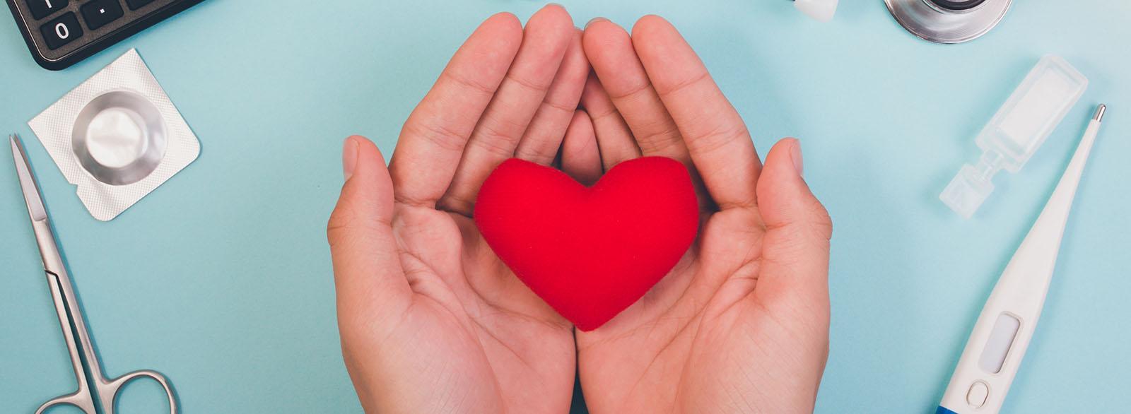 Hands holding plush heart