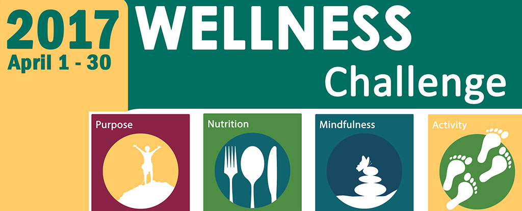 2017 Community Wellness Challenge graphic