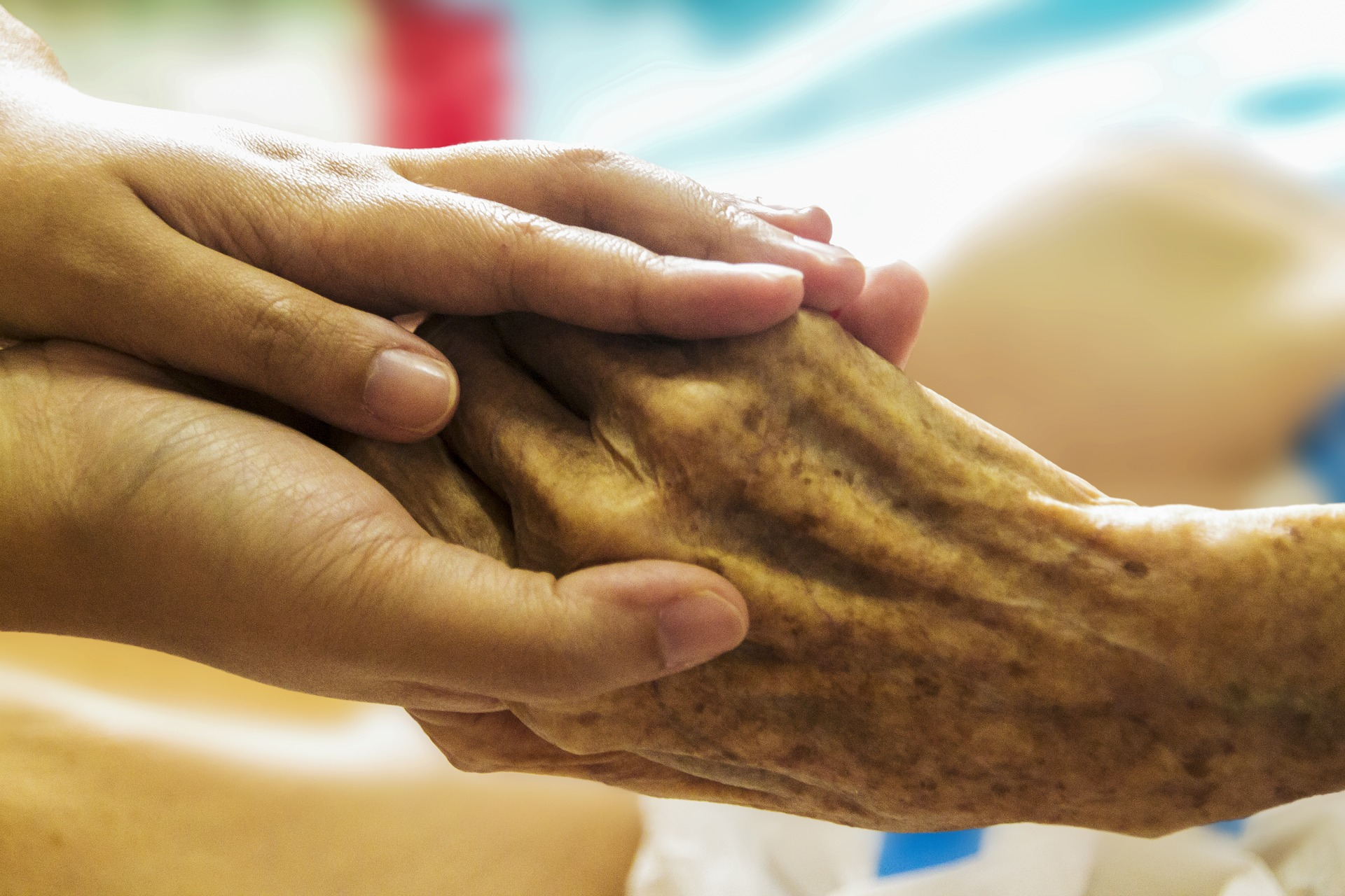 Adult hand holder elderly hand